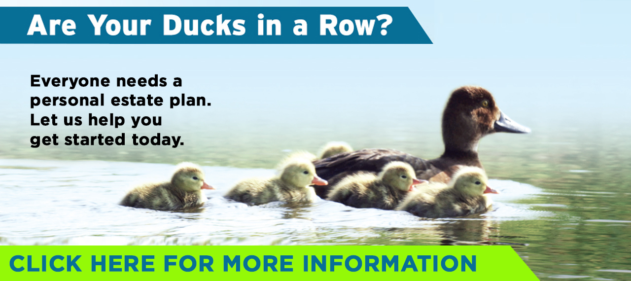 Are Your Ducks in a Row?